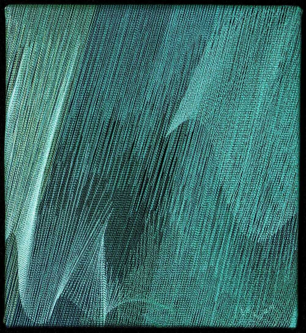 Machine stitching on canvas 17 (Title unspecified)