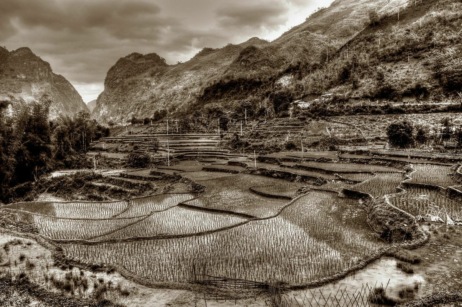 NORTHERN HIGHLANDS (VIETNAM) 01