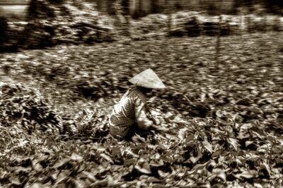 MEKONG DELTA (VIETNAM) 03