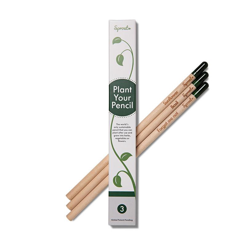 Sprout Bleistifte (3 Stück)