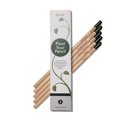 Sprout Bleistifte (5 Stück)