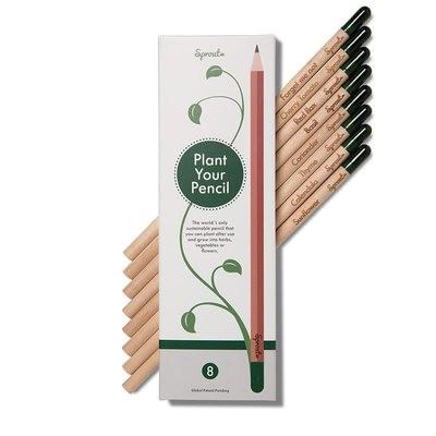 Sprout Bleistifte (8 Stück)