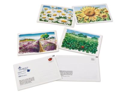 Country Garden Postkarten