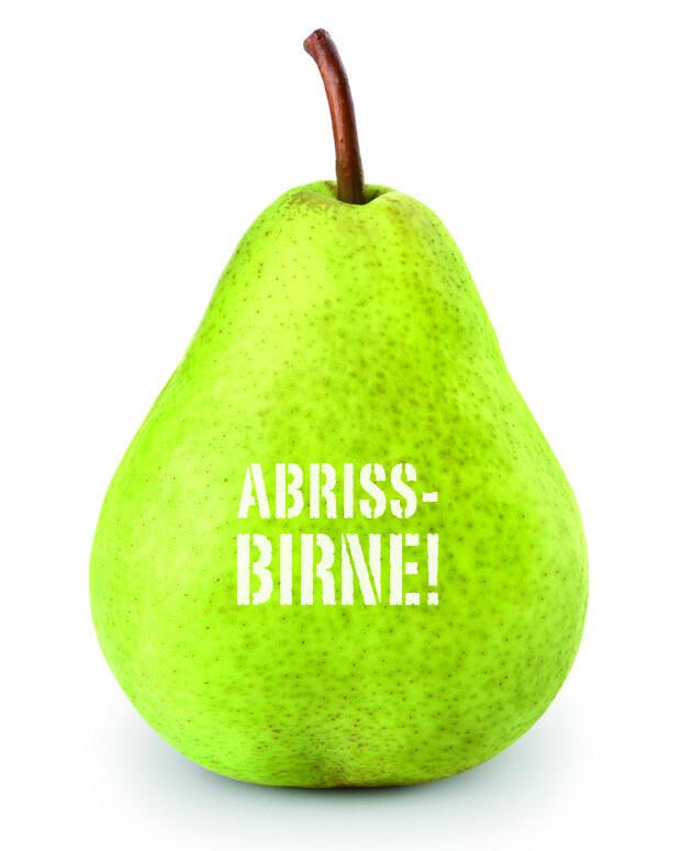 Logo Birne