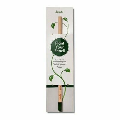 Sprout Bleistift mit Standard-Karte