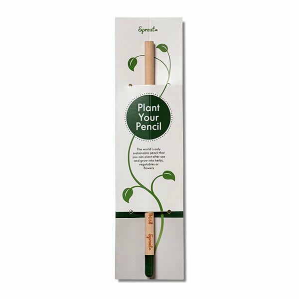 Sprout Buntstift mit Standard-Karte