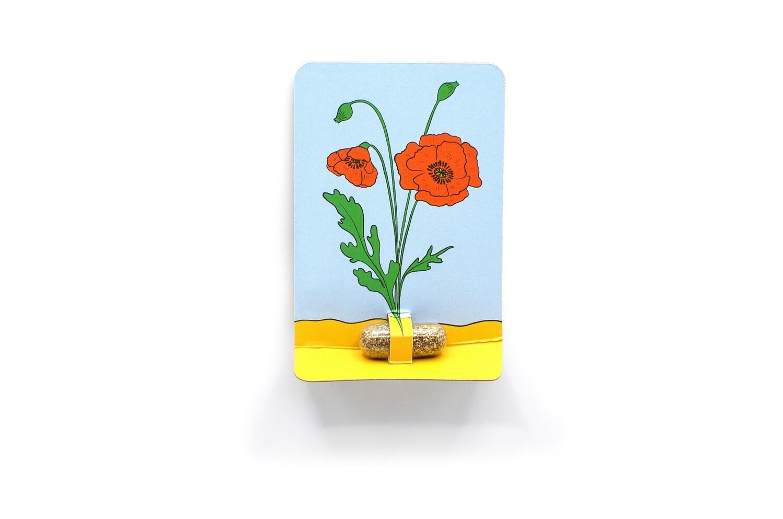 Seedpill Kärtchen Vergissmeinnicht