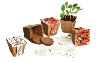 DIY Gemüse-Saatset
