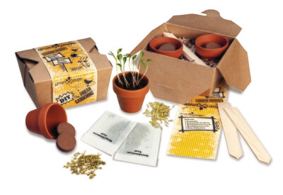 DIY Garten-Set Essbare Blumen
