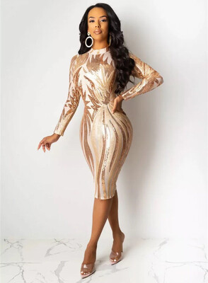 Royale Ambrea Long Sleeve Sexy Body Dress