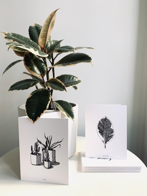 PTP x Flora Card Set