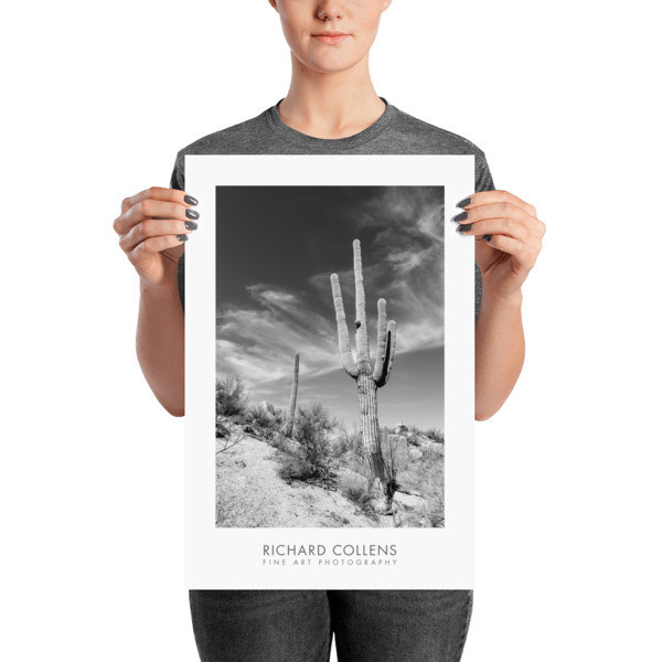 Saguaro against the Sky - Richard Collens Ad Poster