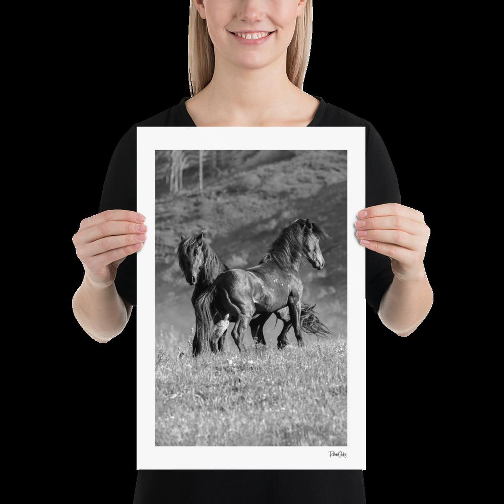"Fine Art Print: Wild Horses - ""The Deal"""