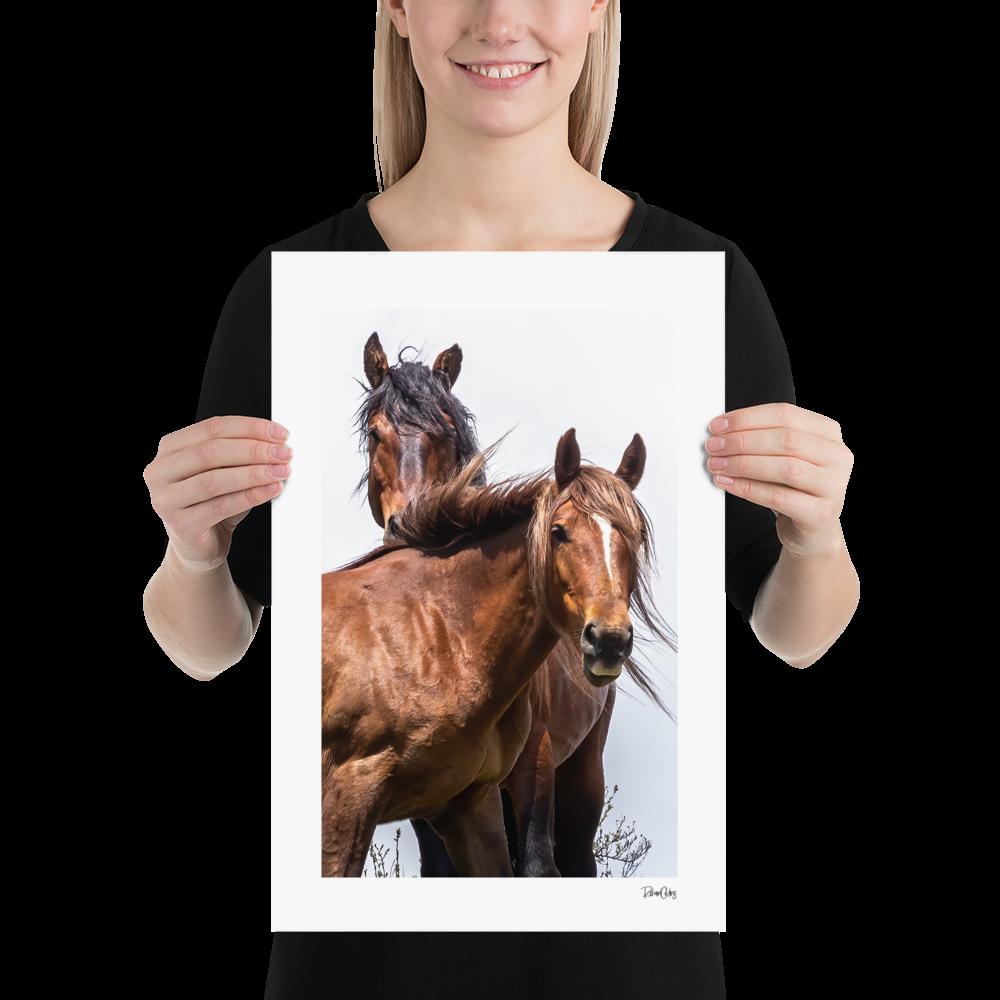 "Fine Art Print: Wild Horses - ""Vogue"""
