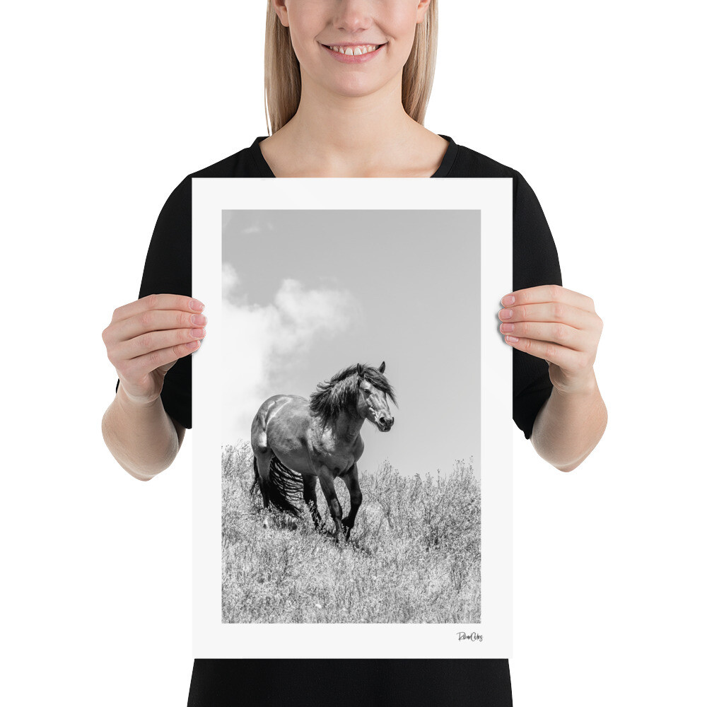 "Fine Art Print: Wild Horses - ""Purpose"""