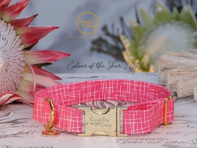 LIVING CORAL DOG COLLAR