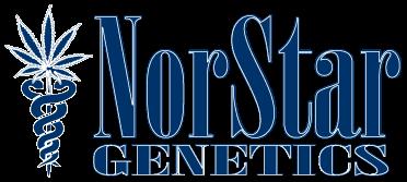 NorStar Genetics Rotten Banana