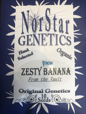 NorStar Genetics Zesty Banana