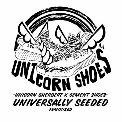 Cult Classics Seeds Unicorn Shoes