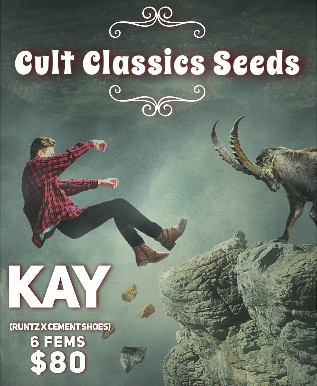Cult Classics Seeds Kay