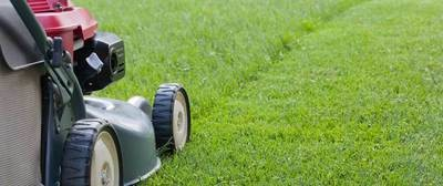Discount Lawn mowing (10% off deal)