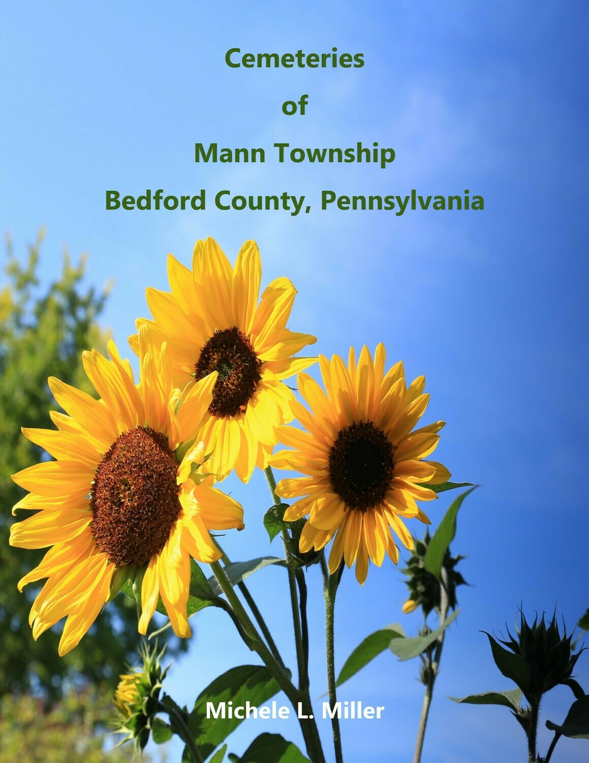 Cemeteries of Mann Township, Bedford County, Pennsylvania