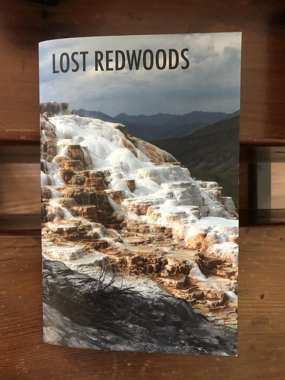 Lost Redwoods #5