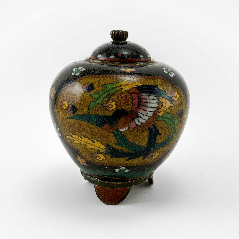 Имбирная ваза Jar