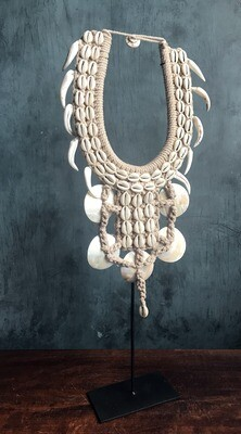 Natural Shell Necklace on Stand