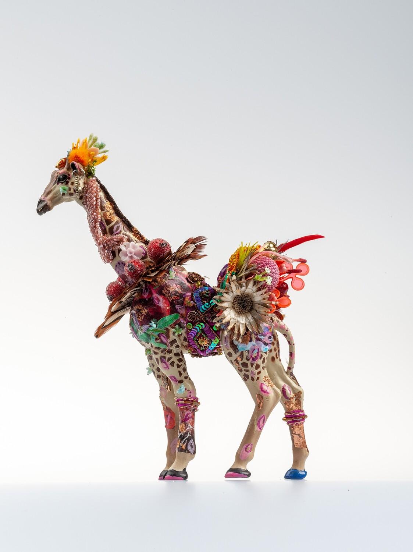 Giraffe Hannah
