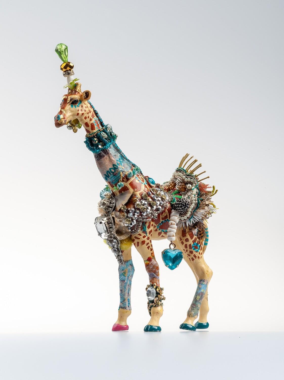 Giraffe Orkney