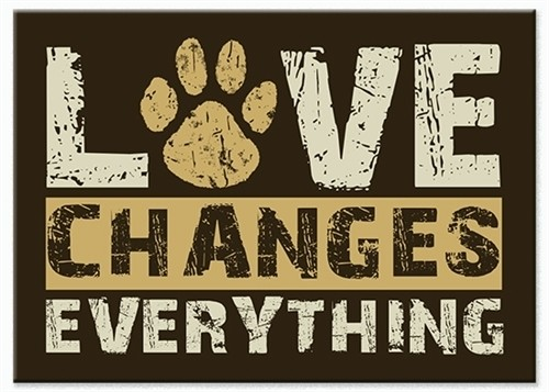 """""""Love Changes Everything"""" Indoor Magnet"""