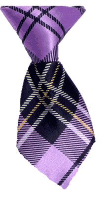 Neck Tie - Goodman