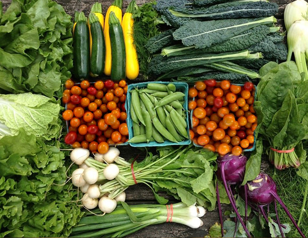 Kalo Monthly Food Pack | Spring Box