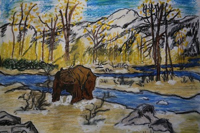 Grizzly on River