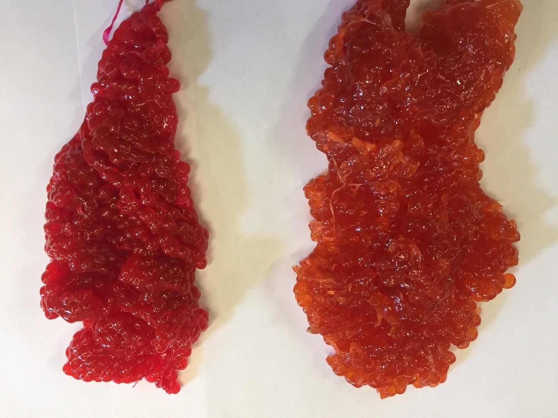 Coho Salmon Skein 1 LB