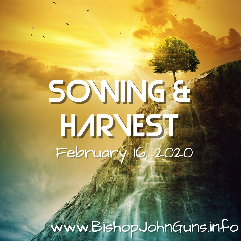 Sowing & Harvest