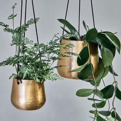 Brass Plant Hanger