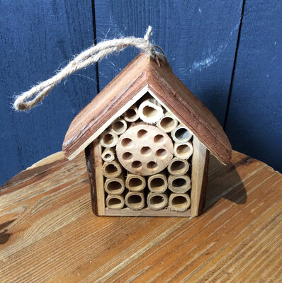 Small Wooden Hanging Bug House