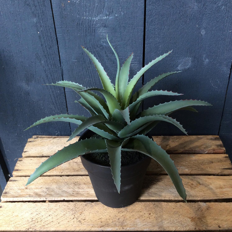 Faux Aloe Vera Plant