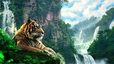 Tiger Art Picture Print with Frame