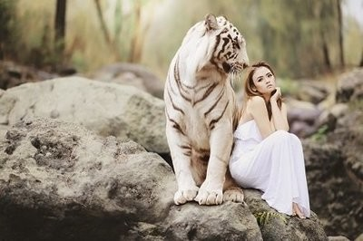 Women with White Tiger Picture Print with Frame