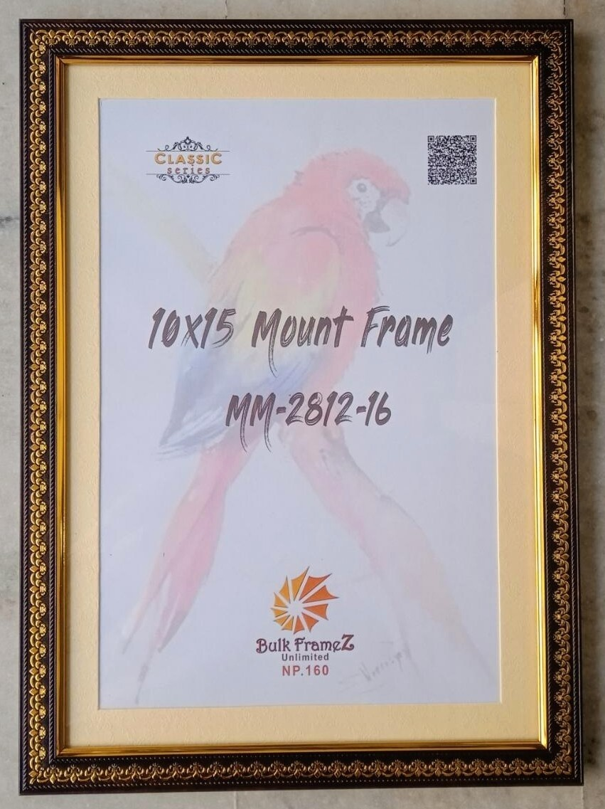 Personalized Photo Mount Frames (Select Frame Size and Upload your Photo here)