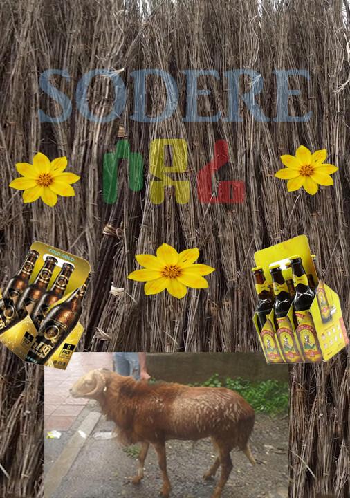 የሶደሬ የበአል ጥቅል 1 Sodere Holiday Package 1 (Ethiopia Only)