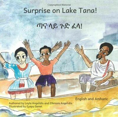 ጣና ላይ  ጉድ ፈላ! Surprise on Lake Tana by Ellenore Angelidis