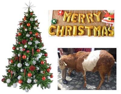 የሶደሬ የገና በአል ጥቅል Sodere Christmas Holiday Package 3 (Ethiopia Only)