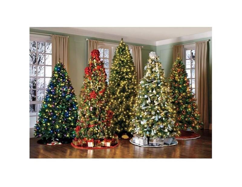 Full Christmas Tree የተሟላ የገና ዛፍ (Ethiopia Only )