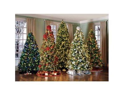 Full Christmas Tree የተሟላ የገና ዛፍ (Ethiopia Only )