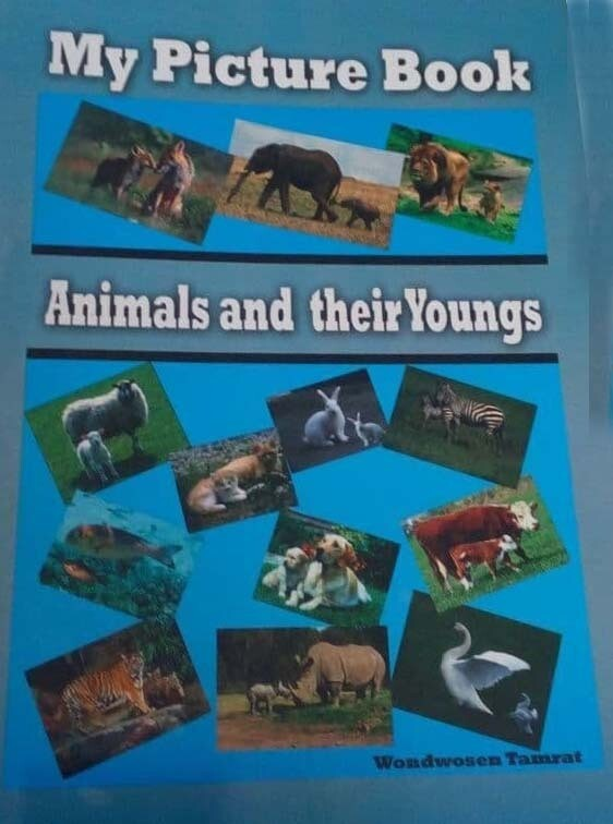 My Picture Book Animal And Their Youngs