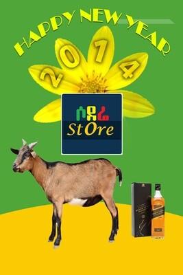 የሶደሬ የአዲስ አመት ጥቅል 4 Sodere New Year Holiday Package 4 (Ethiopia Only)